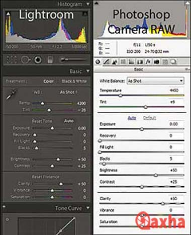 Camera Raw & Lightroom