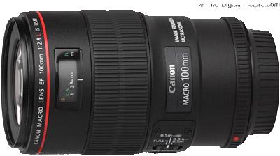 انواع لنز دوربین لنز ماکرو